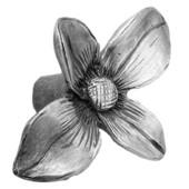 Solid Pewter Dogwood Flower Pull Knob, 1-1/2'' W x 3/4'' D x 2'' H