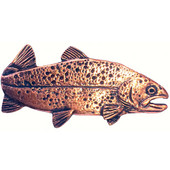 Fish Collection 2-13/16'' Wide Trout Right Face Cabinet Knob in Antique Brass, 2-13/16'' W x 3/4'' D x 1-3/8'' H