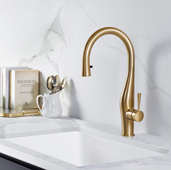Vision Pull Down Kitchen Faucet with Concealed Hand Spray in Brushed Brass, Faucet Height: 17-1/16'' H, Spout Reach: 8-3/8'' D, Spout Height: 9-9/16'' H