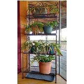 Grace Collection Plant Rack