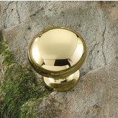 (1-1/4'' Diameter) Steel Mushroom Round Knob in Polished & Lacquered Brass, 31mm Diameter x 29mm D x 19mm Base Diameter