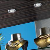 350mA HO-LED Super High Output Swivel Spotlight, Recess Mounted, Brushed Aluminum Finish, 3 x 1 Watt, Warm White