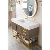 Columbia 48'' Single Bathroom Vanity in Ash Gray and Radiant Gold Finishes with Glossy White Solid Surface Top and Sink