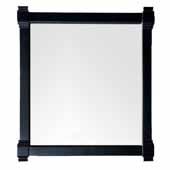 Brittany 35'' Mirror In Black Onyx, 35''W x 1-1/2''D x 39-1/4''H