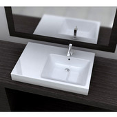 Vitreous China Drop-In Sink with Overflow, 29-1/2''W x 20''D x 7''H