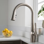 Esina™ Single Handle Pull Down Kitchen Faucet with Dual Function Sprayhead in all-Brite™ Spot Free Stainless Steel Finish
