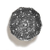 Scallops & Seahorses Collection 1-3/4'' Diameter Round Urchin Knob in Polished Pewter, 1-3/4'' Diameter x 1-1/4'' D