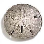 Scallops & Seahorses Collection 2-1/2'' Diameter Round Sand Dollar Knob in Polished Pewter, 2-1/2'' Diameter x 7/8'' D