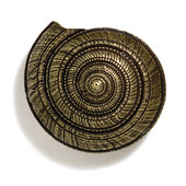 Scallops & Seahorses Collection 2-1/2'' Diameter Round Sundial Knob in Antique Brass, 2-1/2'' Diameter x 1-1/4'' D