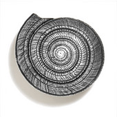 Scallops & Seahorses Collection 2-1/2'' Diameter Round Sundial Knob in Polished Pewter, 2-1/2'' Diameter x 1-1/4'' D