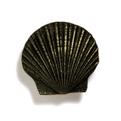 Scallops & Seahorses Collection 1-1/2'' W Mini Scallop Knob in Antique Brass, 1-1/2'' W x 3/4'' D