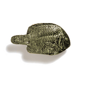 Scallops & Seahorses Collection 1-3/4'' W Mini Fish Knob Right Face in Antique Brass, 1-3/4'' W x 3/4'' D