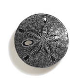 Scallops & Seahorses Collection 1-1/2'' Diameter Round Mini Sand Dollar Knob in Antique Pewter, 1-1/2'' Diameter x 3/4'' D