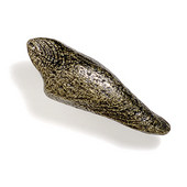 Bamboo & Stone Collection 3'' W Driftwood Knob in Antique Brass, 3'' W x 1-1/2'' D