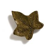 Pinecones & Jasmine Collection 1-3/4'' W Ivy Knob in Antique Brass, 1-3/4'' W x 1-1/4'' D