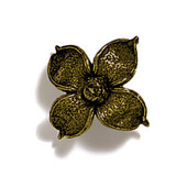 Pinecones & Jasmine Collection 2'' W Flower Knob in Antique Brass, 2'' W x 1-1/8'' D