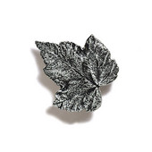 Pinecones & Jasmine Collection 1-3/4'' W Silver Maple Knob in Antique Pewter, 1-3/4'' W x 3/4'' D
