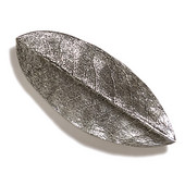 Pinecones & Jasmine Collection 5'' W Rhododendron Knob in Antique Pewter, 5'' W x 3/4'' D