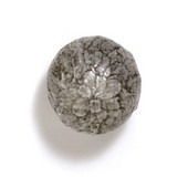 Bark, Leaves & Rocks Collection 1-1/4'' Diameter Round Leaves Ball Knob in Polished Pewter, 1-1/4'' Diameter x 1-1/2'' D