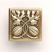 Kitchen Garden Collection 1-1/2'' Wide Autumn Squash Square Cabinet Knob in Antique Brass, 1-1/2'' W x 7/8'' D x 1-1/2'' H