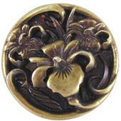 Nouveau Collection 1-3/8'' Diameter River Irises Round Cabinet Knob in Antique Brass, 1-3/8'' Diameter x 7/8'' D