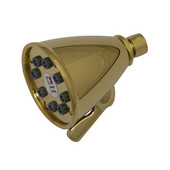 Beautiful Expressions Polished Brass Shower Head with Adjustable Jets, 12''