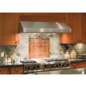 - Under Cabinet Range Hood, 30'' W, Stainless Steel